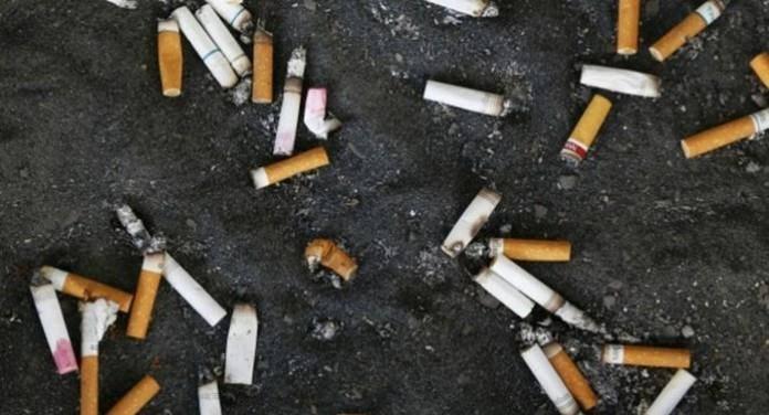 Image result for тамхины иш хаях